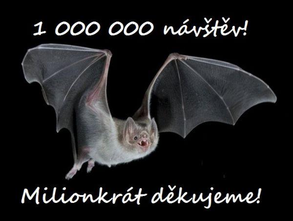 netopyr_milion